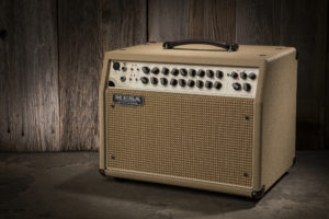 Mesa Boogie Rosette 300/Two: Eight